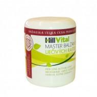 Master balzam 250 ml na bolesť kĺbov